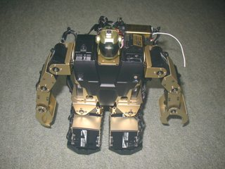 robo486.jpg